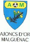 logo du club Ajoncs D'Or Malguénac Officiel