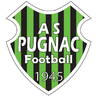 logo du club AS PUGNAC FOOTBALL 1945