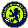 logo du club BORMES MIMOSAS SPORT