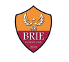 logo du club BRIE FOOTBALL CLUB
