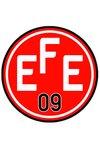 logo du club EFESPOR