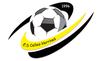 logo du club ENTENTE SPORTIVE CELLES-VERRINES