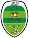 logo du club EQUIPES SPORTIVES RECHESY FOOT