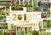 Bonne Année 2018 ! - FOOTBALL CLUB PLELAN-MAXENT