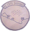 logo du club FOOTBALL CLUB COTE SAUVAGE