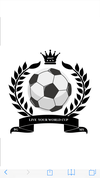 logo du club LIVE YOUR WORDL CUP