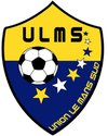 logo du club UNION LE MANS SUD 72