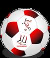 logo du club Union Sportive Saint Vaury