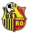 logo du club UNION SPORTIVE DE RIS-ORANGIS