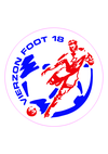 logo du club  VIERZON FOOT 18