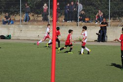 Plateau débutants - club athletique propriano