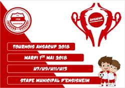Les inscriptions à la ANSACUP 2018 sont ouvertes !