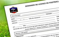 Licences 2018/2019