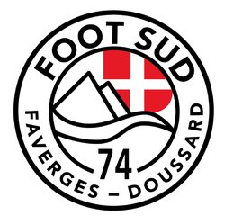 logo du club FOOT SUD 74