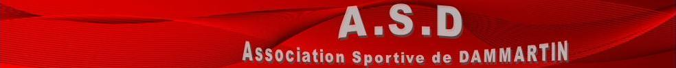 ASSOCIATION SPORTIVE DE DAMMARTIN : site officiel du club de foot de DAMMARTIN EN SERVE - footeo