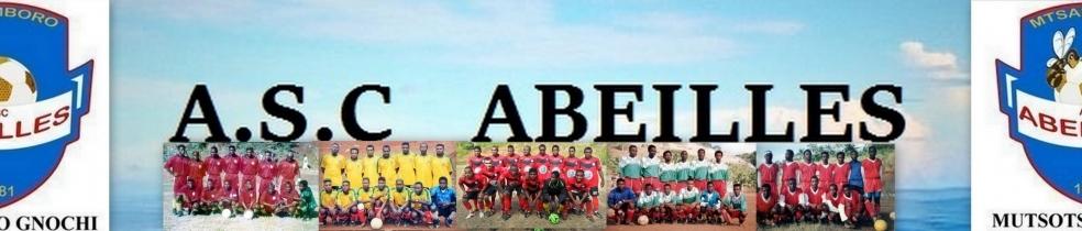 A.S.C  ABEILLES DE M'TZAMBORO : site officiel du club de foot de MTSAMBORO - footeo