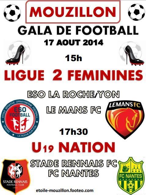 Affiche Gala 2014