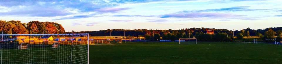 ETOILE SPORTIVE DE SOUVIGNE : site officiel du club de foot de SOUVIGNE - footeo