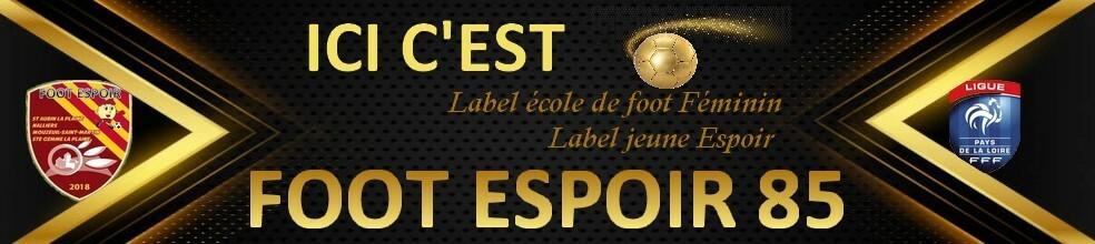 FOOT ESPOIR 85 : site officiel du club de foot de NALLIERS - footeo