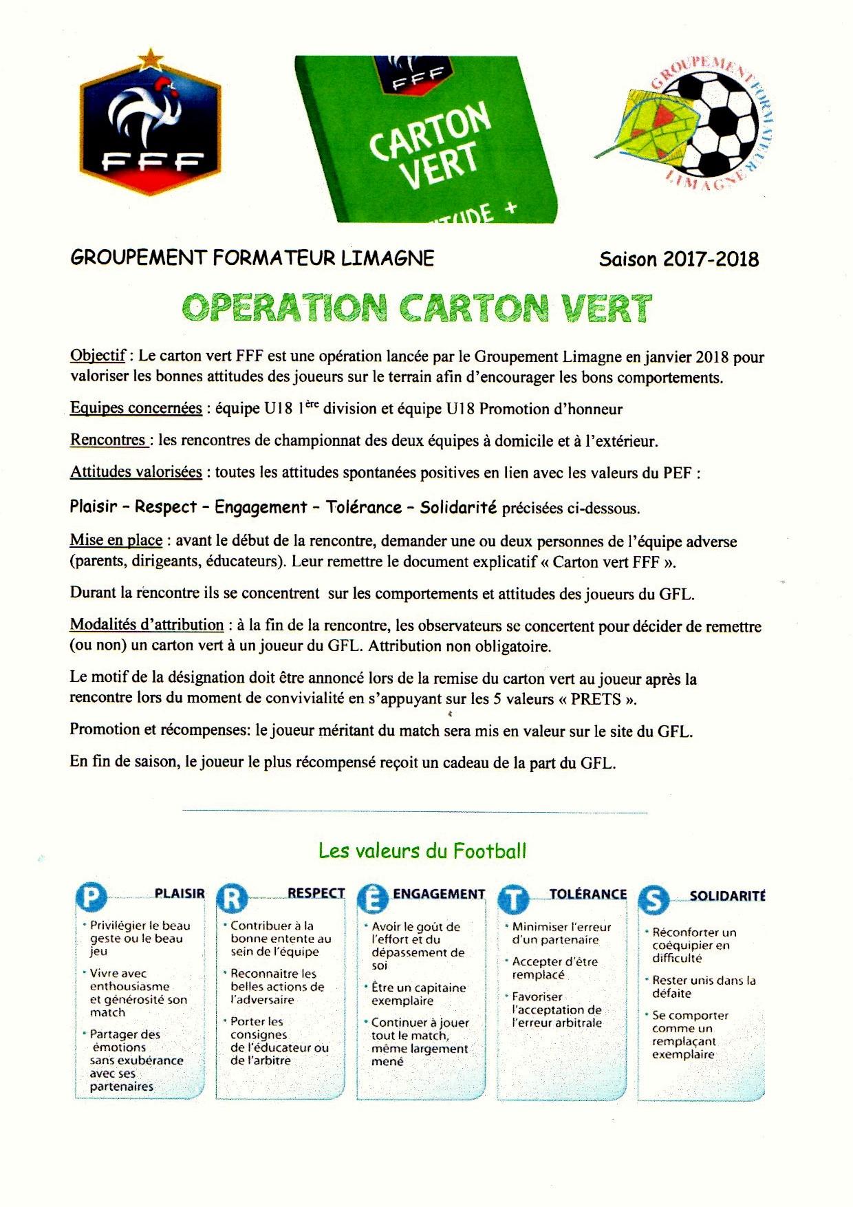 GFL CARTON VERT.jpg