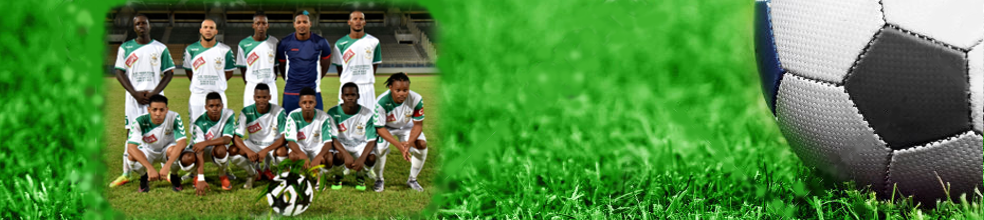 Jeunesse Sportive Eucalyptus : site officiel du club de foot de LE FRANCOIS - footeo