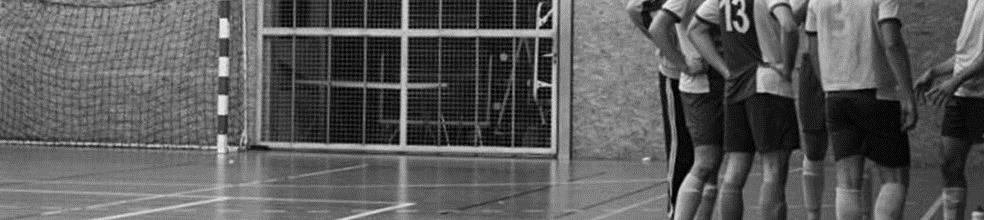 LCDF Angers Futsal : site officiel du club de foot de ANGERS - footeo