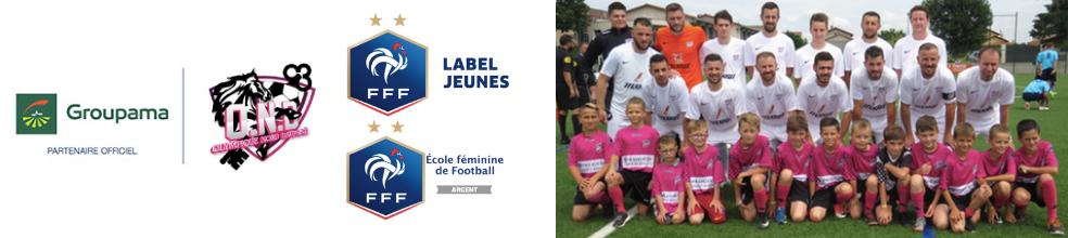 OLYMPIQUE NORD DAUPHINE : site officiel du club de foot de Saint-Georges-d'Espéranche - footeo