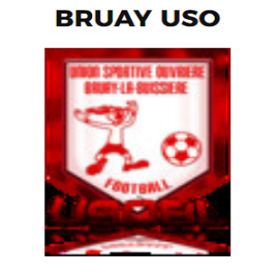 Logo BRUAY USO.png