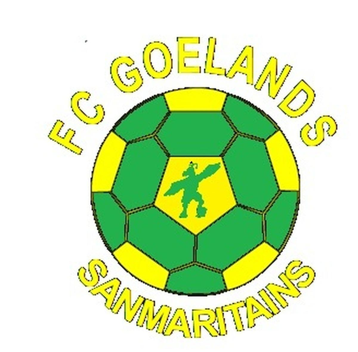 Goelands Sanmaritains 3