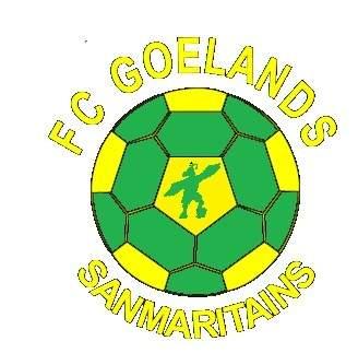 Goélands Sanmaritains