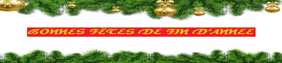 U15A Olympique Adamois : site officiel du club de foot de L ISLE ADAM - footeo