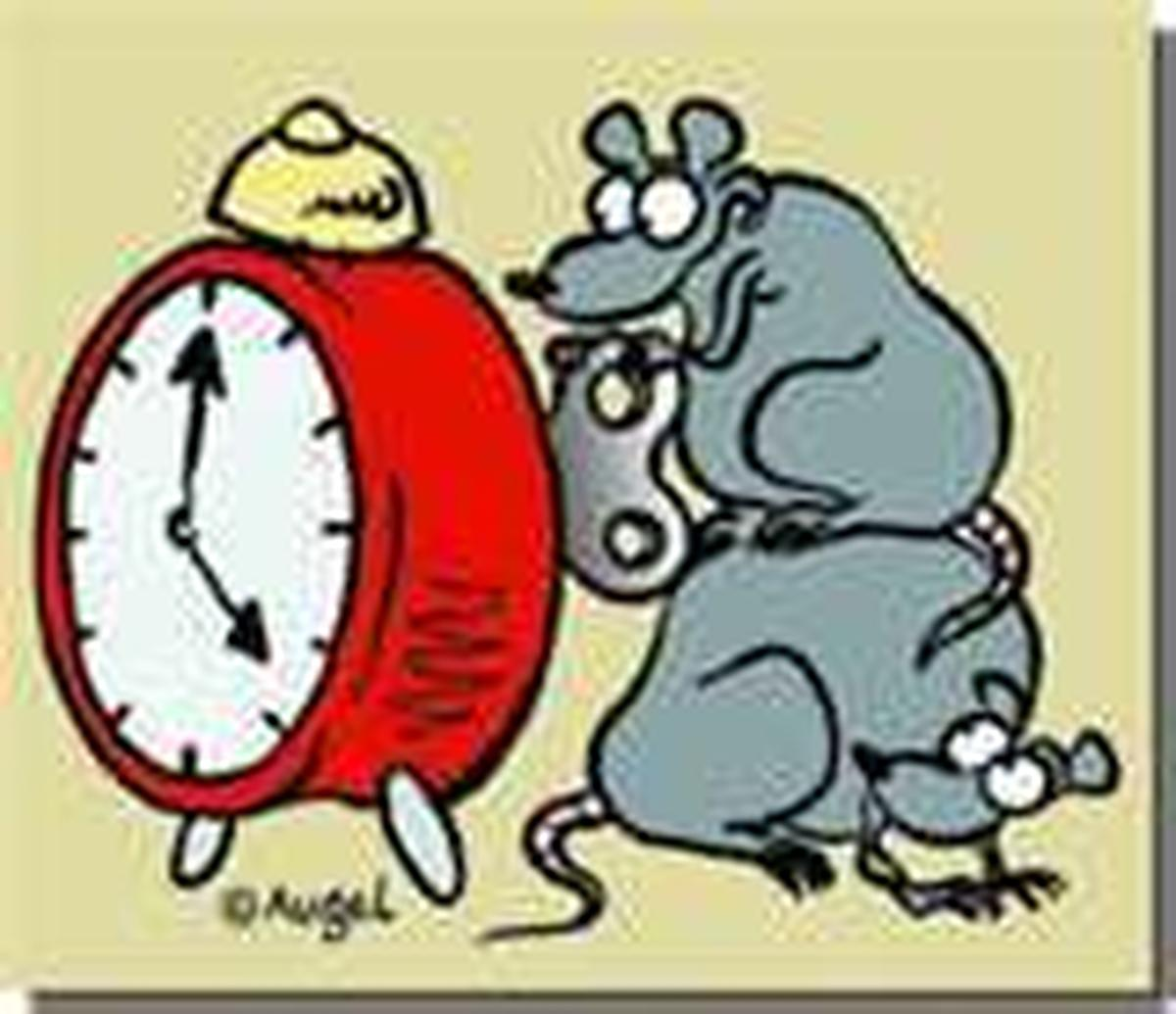 ATTENTION CE W-E .....DECALAGE HORAIRE!!!!