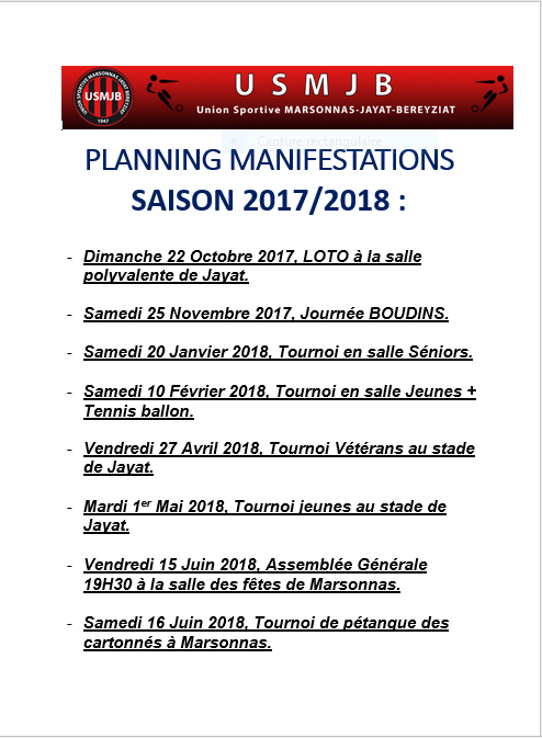Planning manifs 2017-2018.PNG