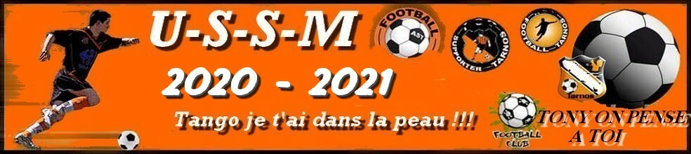 Union Sportive San Martinoise ( USSM ) : site officiel du club de foot de ST MARTIN EN BRESSE - footeo