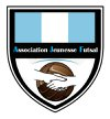 logo du club Association Jeunesse Futsal