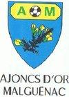 logo du club Ajoncs D'Or Malguénac Officiel