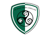 logo du club ASSOCIATION SPORTIVE SAINT PERN LANDUJAN