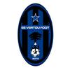 logo du club Étoile Sportive Vertou Foot