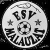 logo du club ESV Malauzat