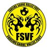 logo du club FAREINS SAONE VALLEE FOOT