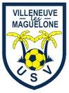 logo du club US VILLENEUVOISE