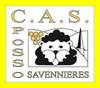 logo du club CAS Possosavennières