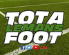 logo du club Totalemansfoot