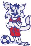 logo du club club us.auberchicourt