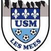 logo du club Union Sportive MEENNE