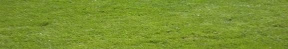 USOAAS : site officiel du club de foot de ALBERT - footeo