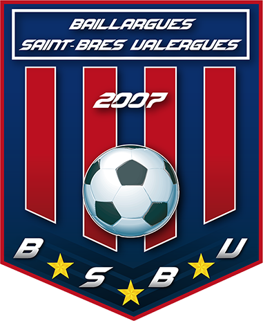 BSBV 2013