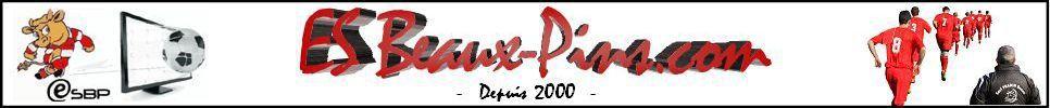 Entente Sportive des Beaux-Pins : site officiel du club de foot de CHARME - footeo