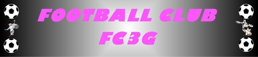 FC3G- FC GUELTAS ST GERAND ST GONNERY : site officiel du club de foot de PONTIVY - footeo