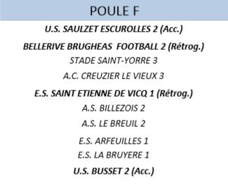 Poule DP 4